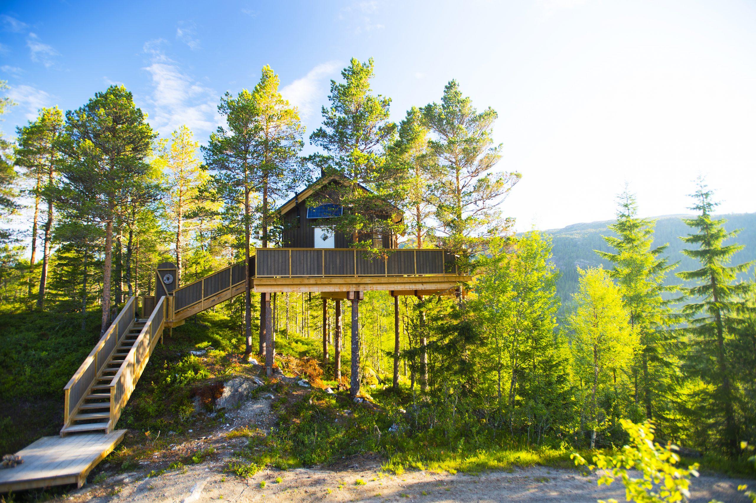 Unique Accommodation, Trettop cabin. Photo: Olav Breen/ Kystriksveien