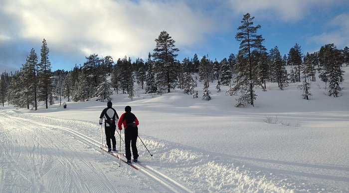 Cross-country ski trails